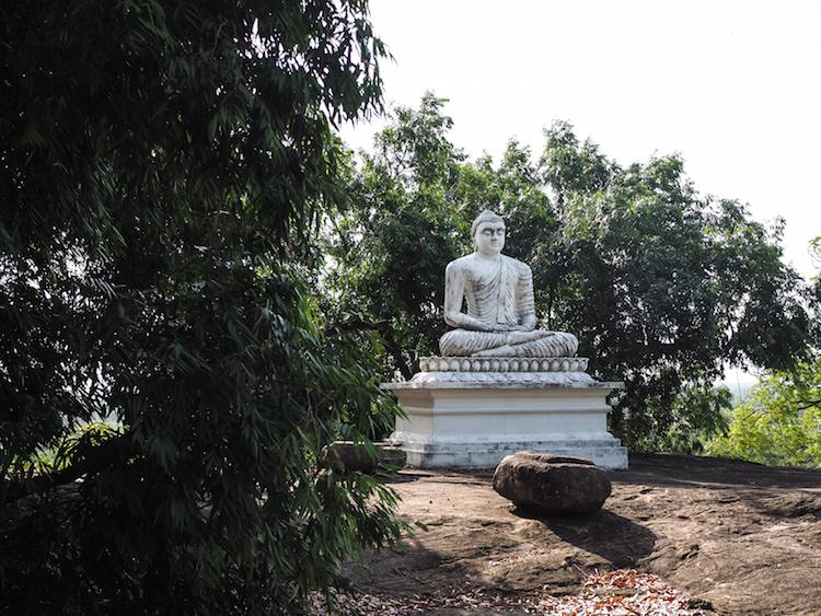 Pidurangala boeddha beelden sri lanka