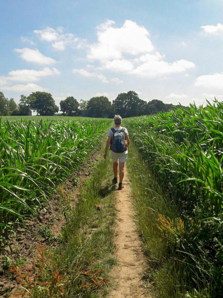 PieterPad meerdaagse wandeltocht nederland