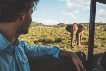 Pilanesberg Zuid Afrika