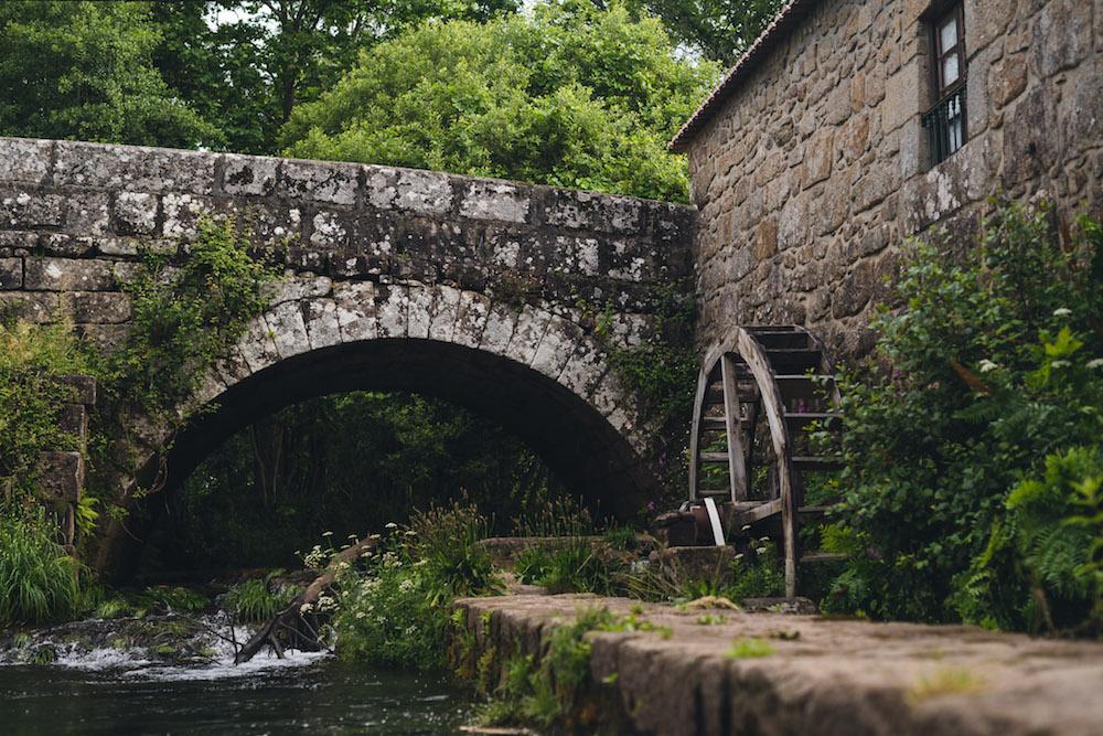 Portugal natuur brug