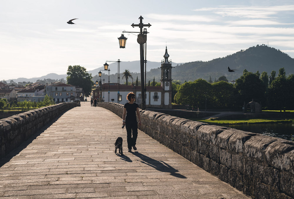 Portugal NATURE-15