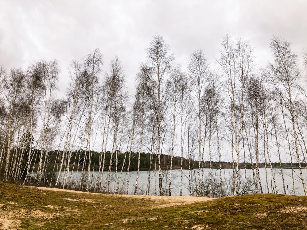 Reindersmeer Maasduinen limburg