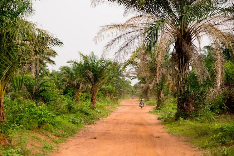Reis naar Benin Onderweg afrika (Riske)