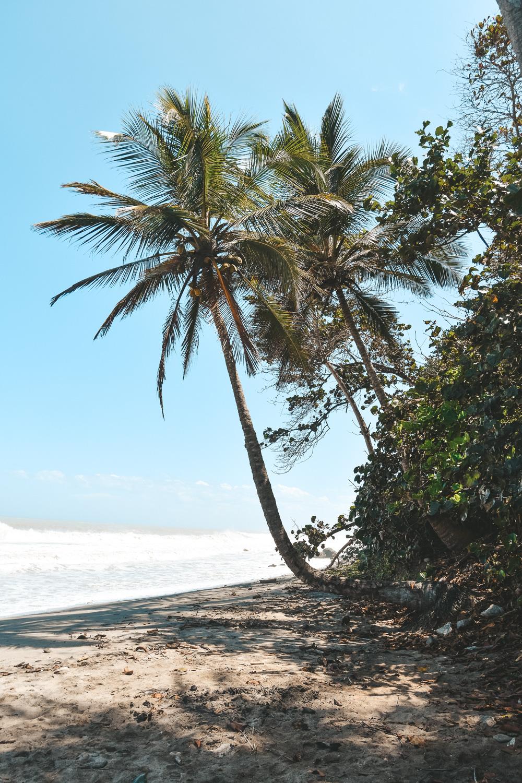 Reisroute Colombia Palomino strand