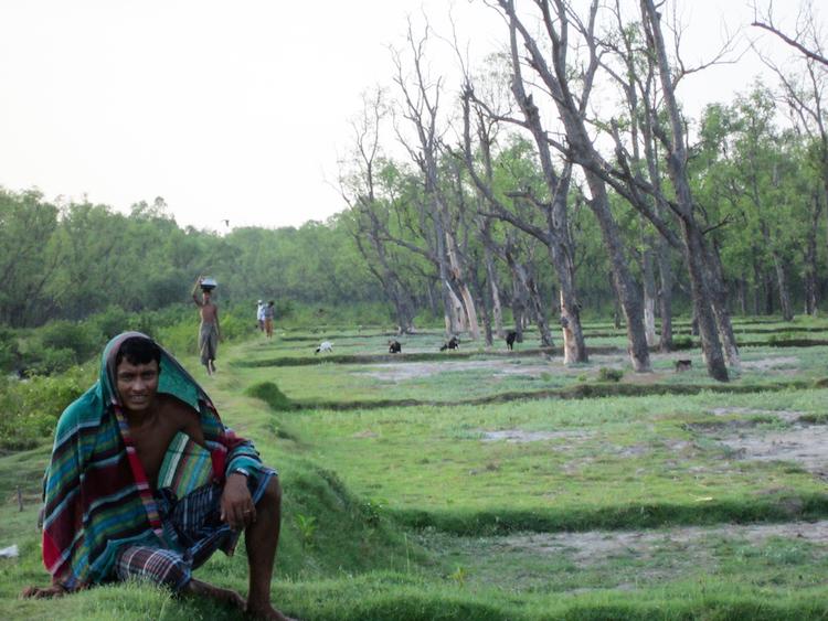 Reizen in Bangladesh