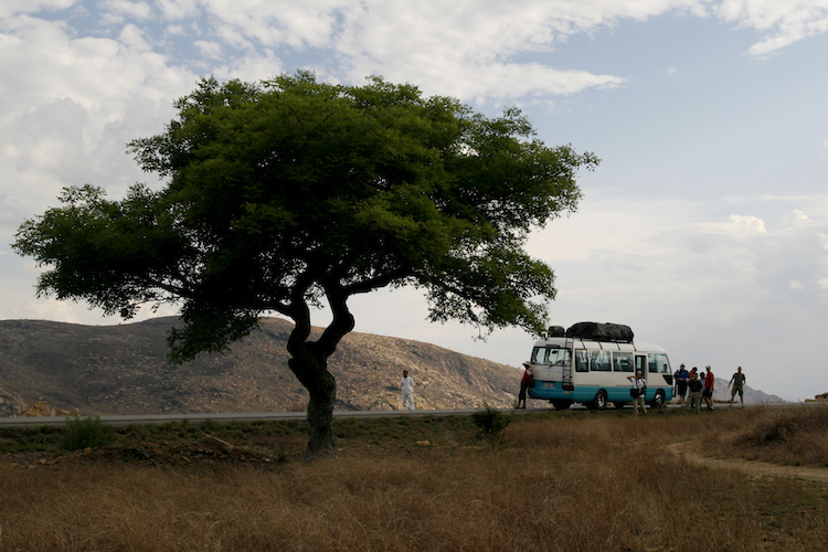 Reizen naar Madagascar