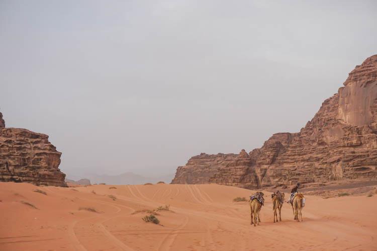 Roadtrip israel jordanie wadi rum