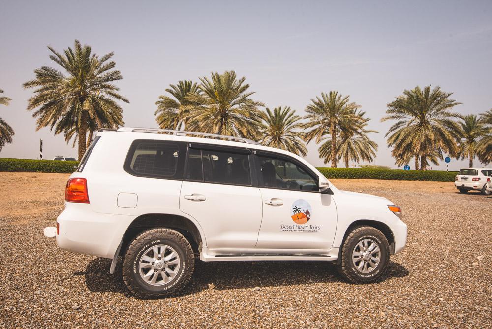 Rondreis Oman dessert flower tours
