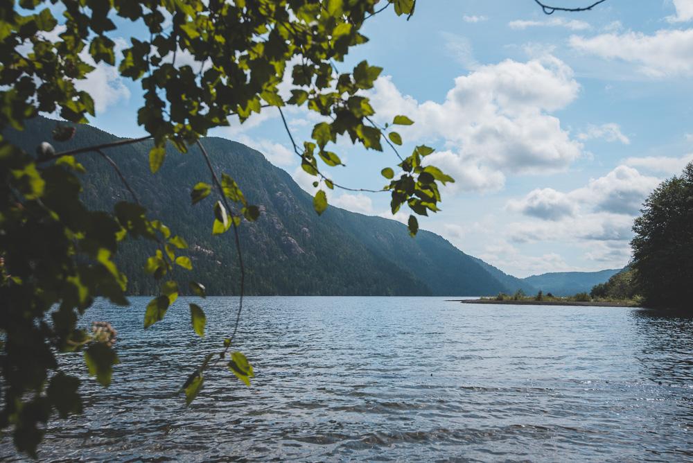Rondreis Vancouver Island MacMillan Provincial Park