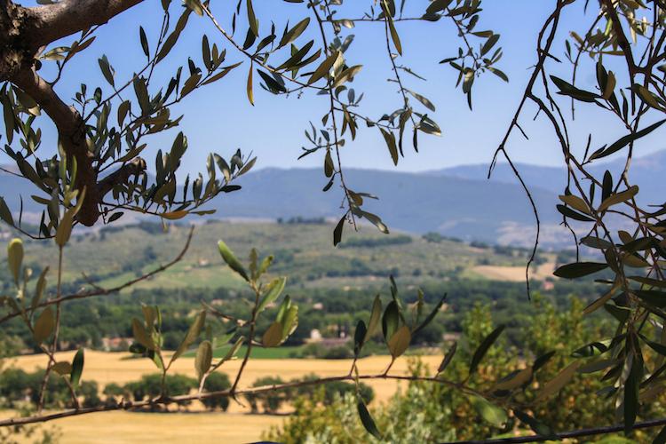 Rondreis in Umbrie maken in Italie