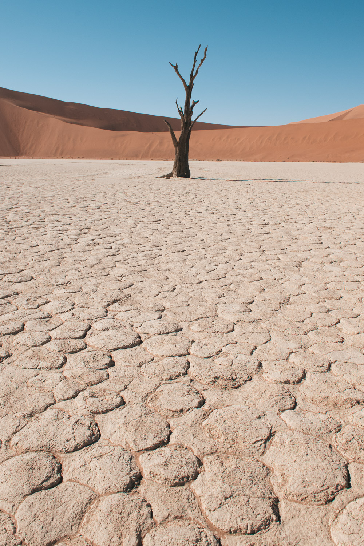 Rondreis namibie deadvlei sossusvlei
