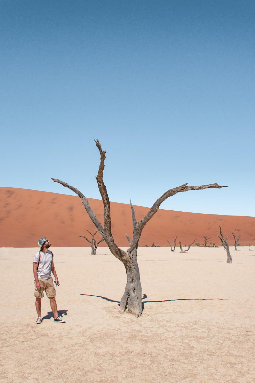 Rondreis namibie route deadvlei sossusvlei