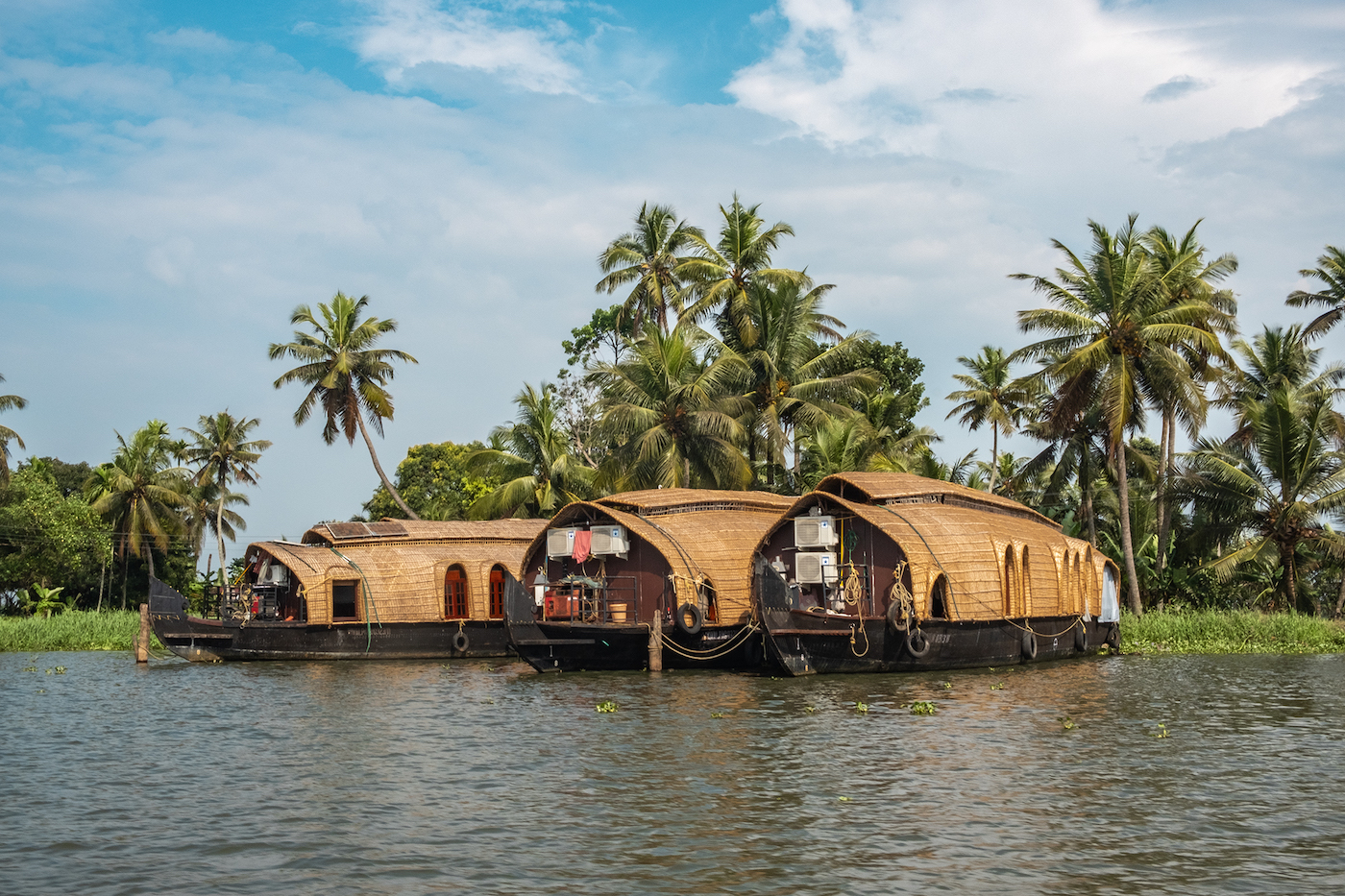 Rondreis zuid-india alleppey
