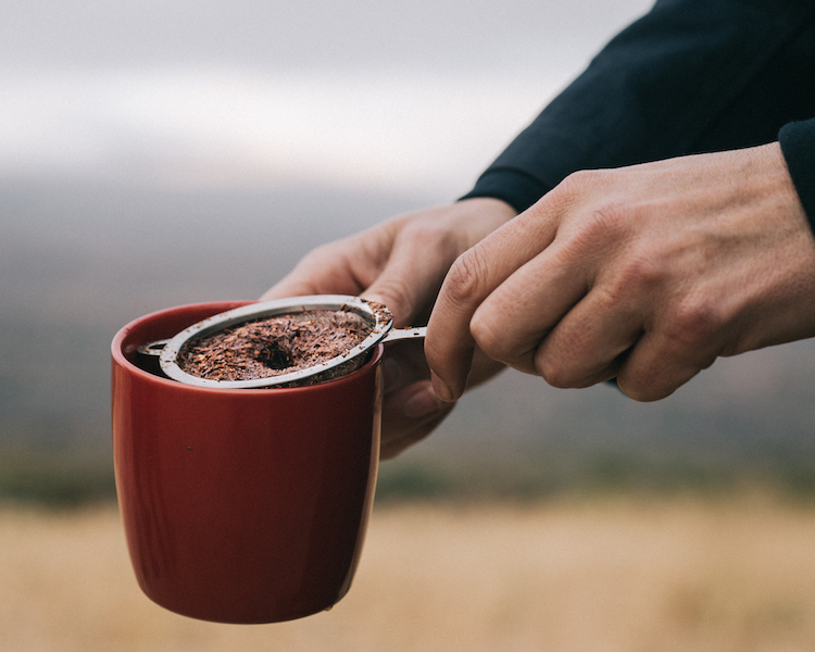 Rooibos thee maken in cederberg zuid-afrika
