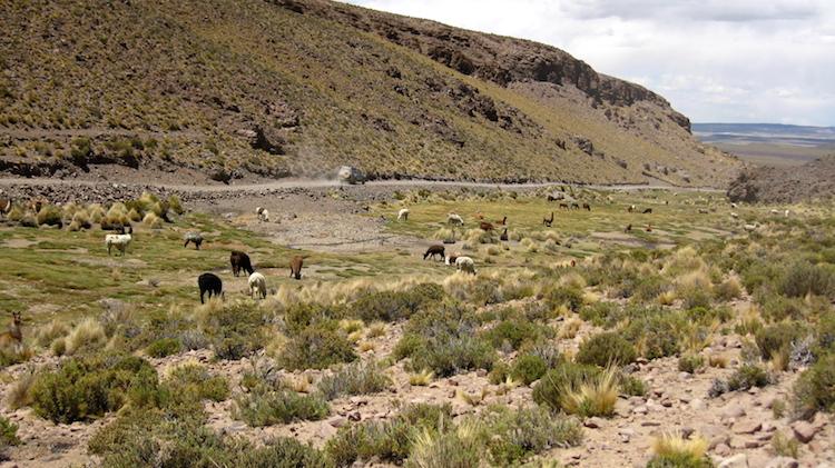 Salar de Uyuni landschap 6 Iris Timmermans