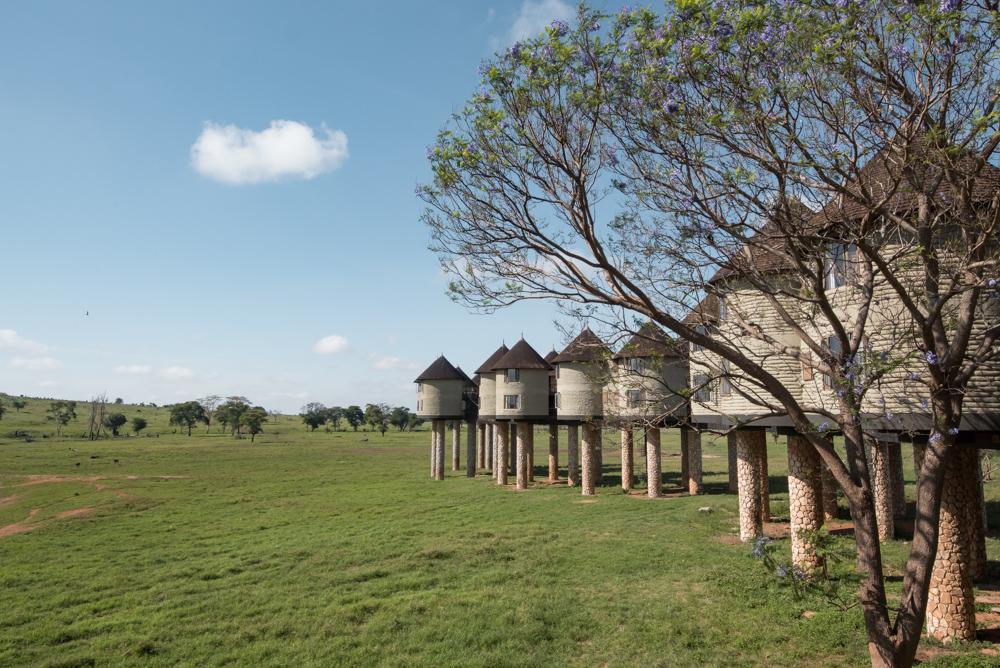 Salt Lick Lodge huisjes Taita Hills kenia