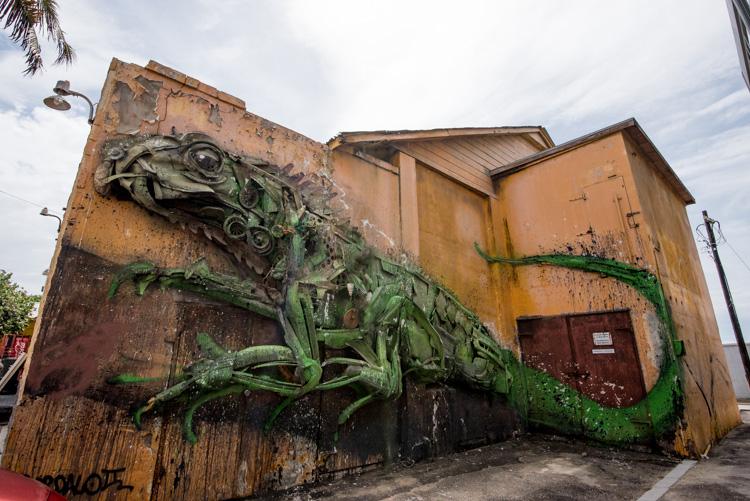 San Nicolas Aruba Street art hagedis