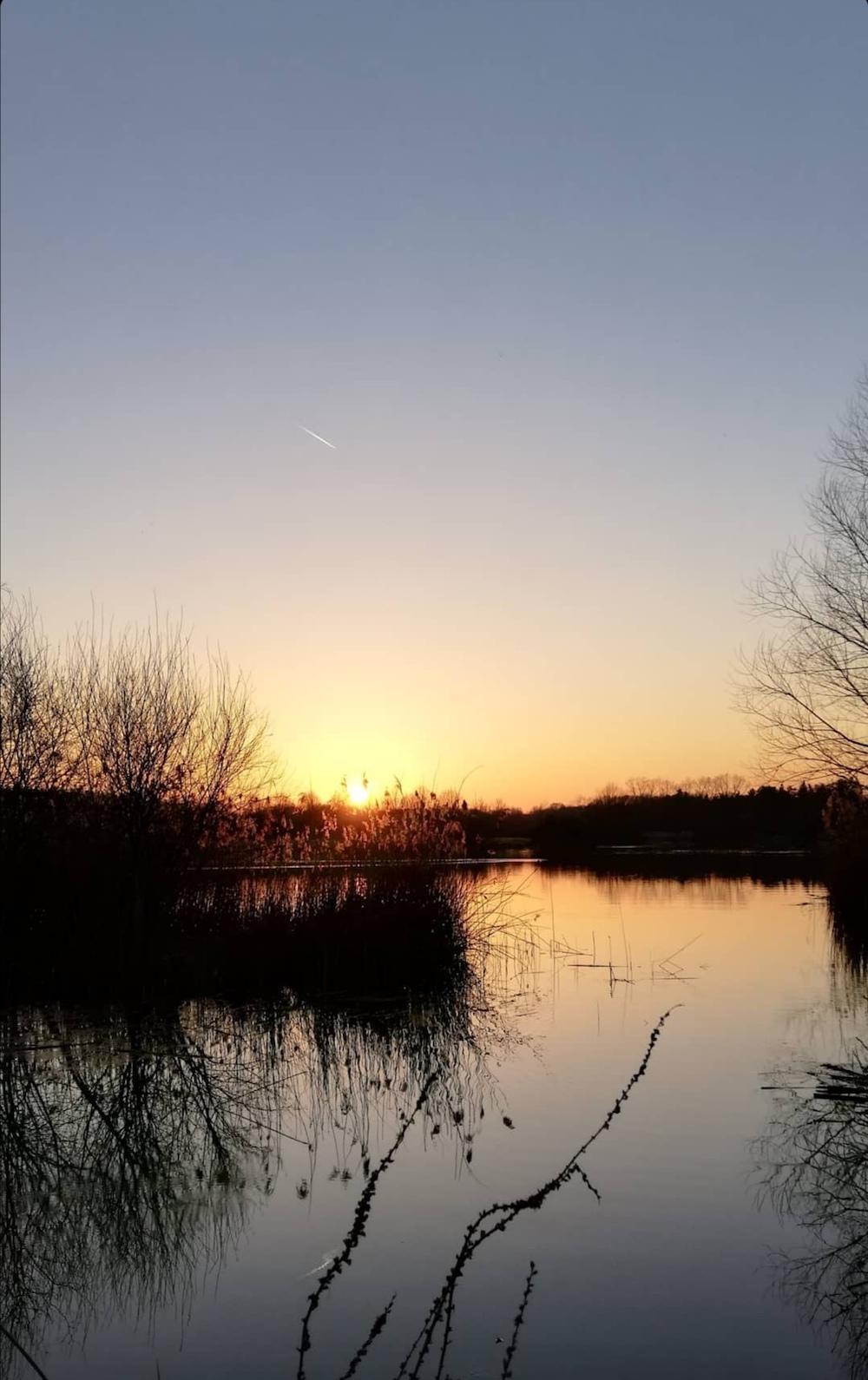 Zonsondergang bij het bomenpark Oss