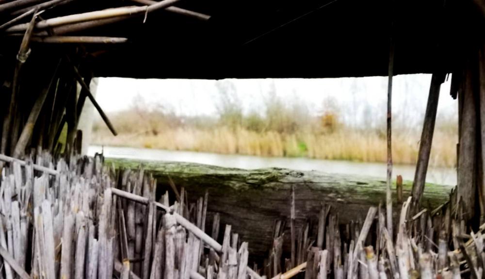Wat te doen in Oss, eendenkooi