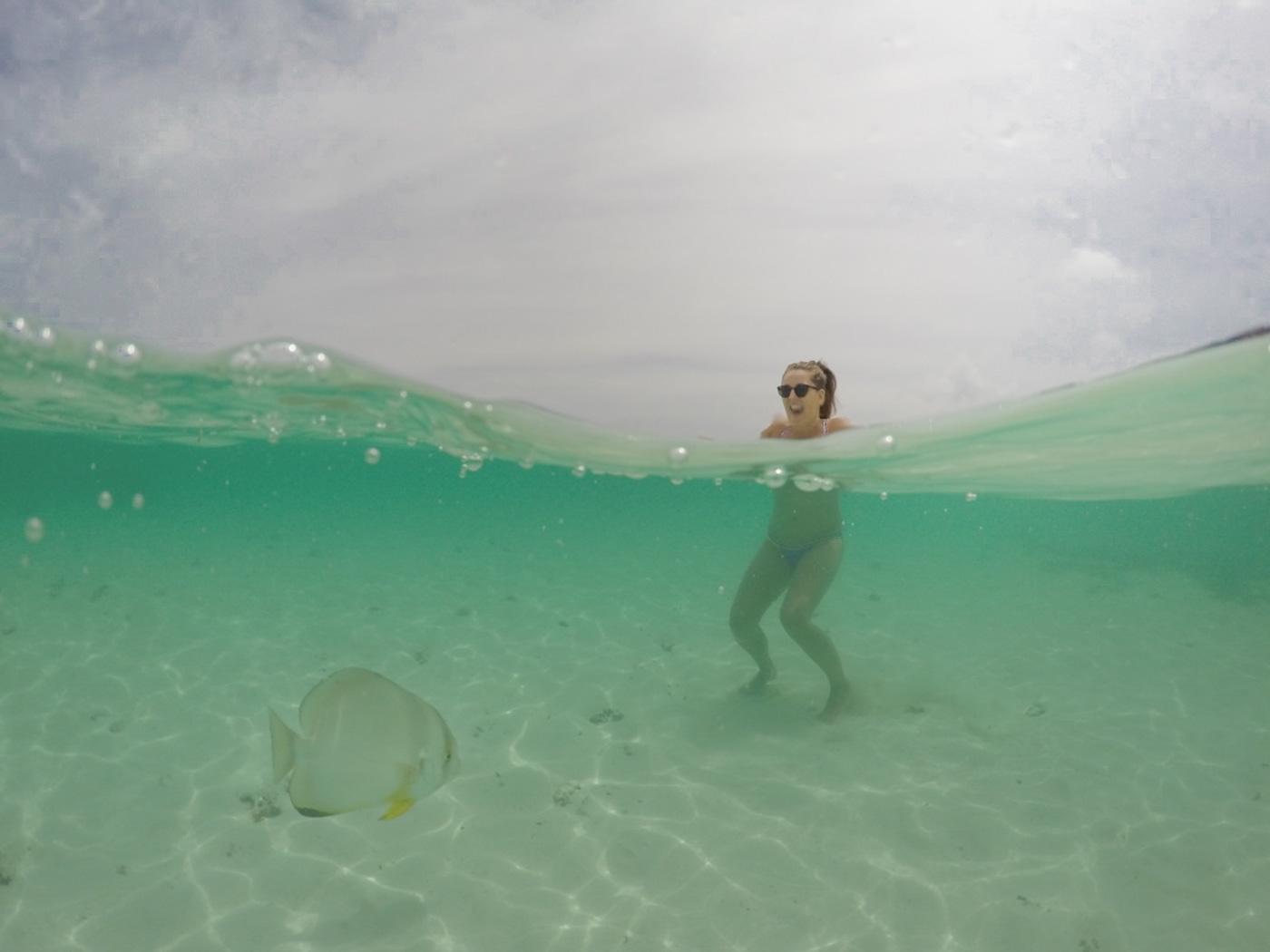Seychellen La Digue onderwater