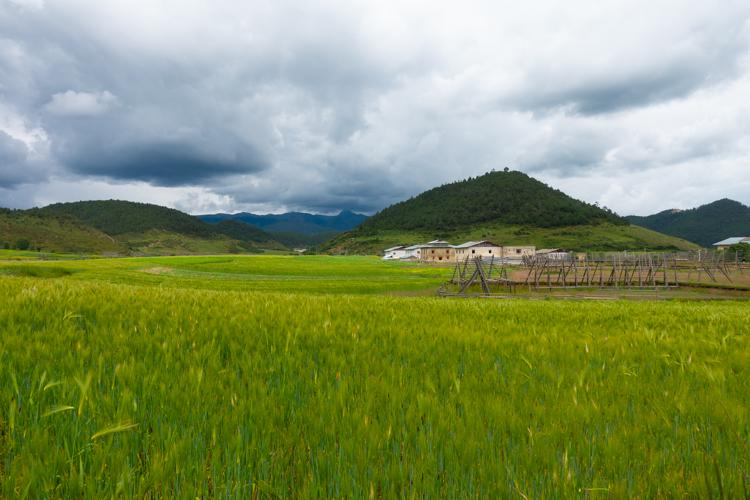 Shangri-la-velden-tibet