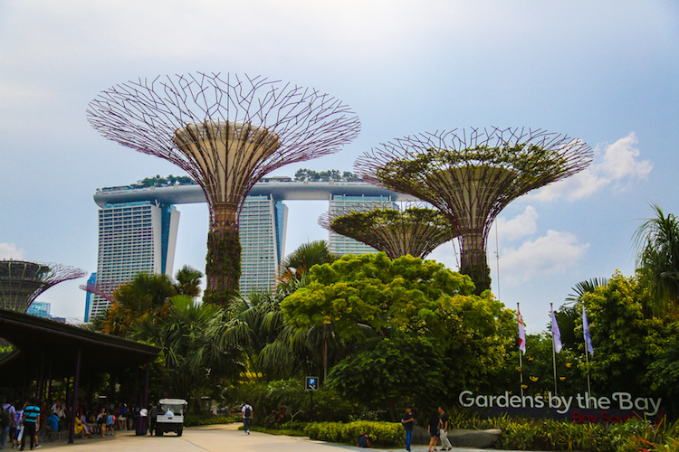 Singapore trees en schip hotel gardens by the bay