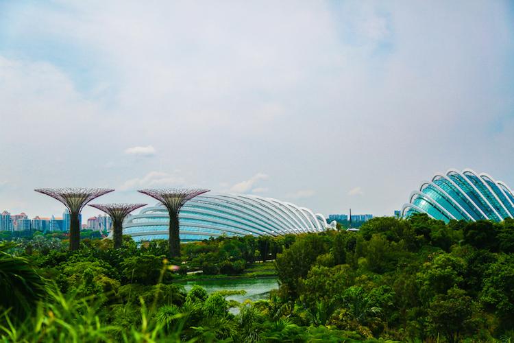 Singapore trees koepels