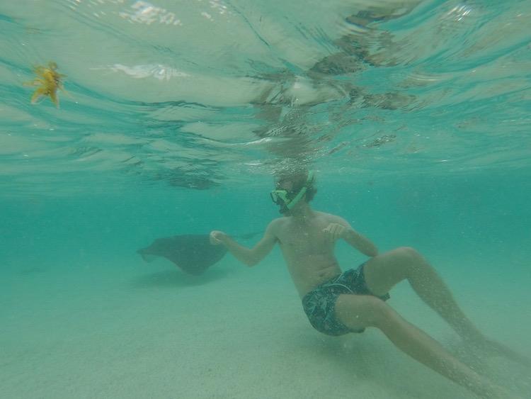 Snorkelen antigua barbuda