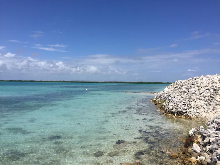 Snorkelen op Bonaire bij Lac Bay