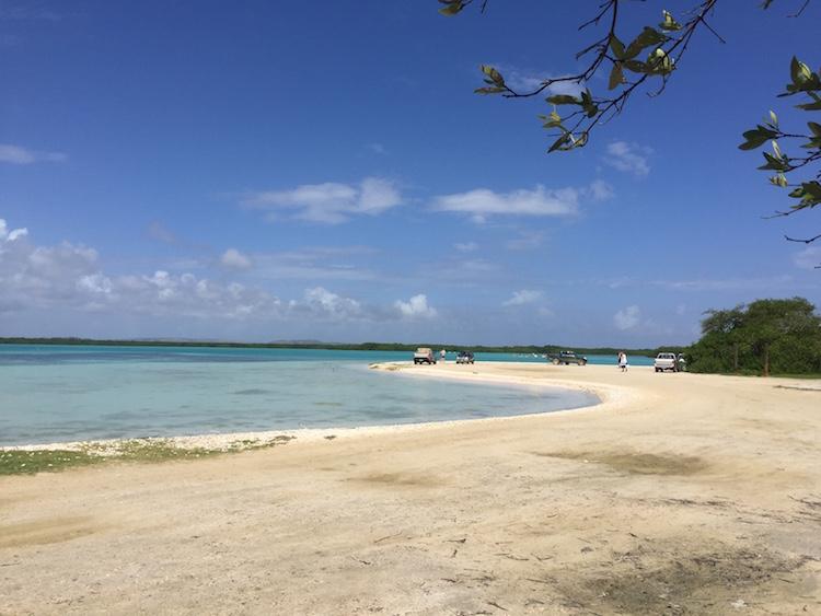 Snorkelen op Bonaire bij het strand Lac Bay