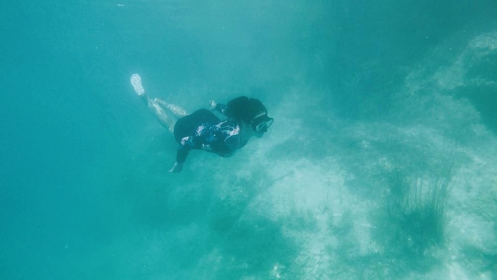 snorkelen rondreis mexico 2 weken