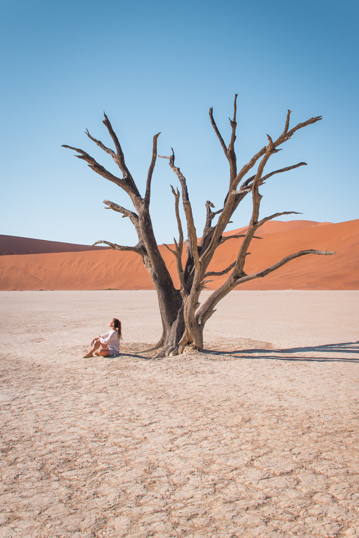 Sossusvlei Deadvlei namibie-2