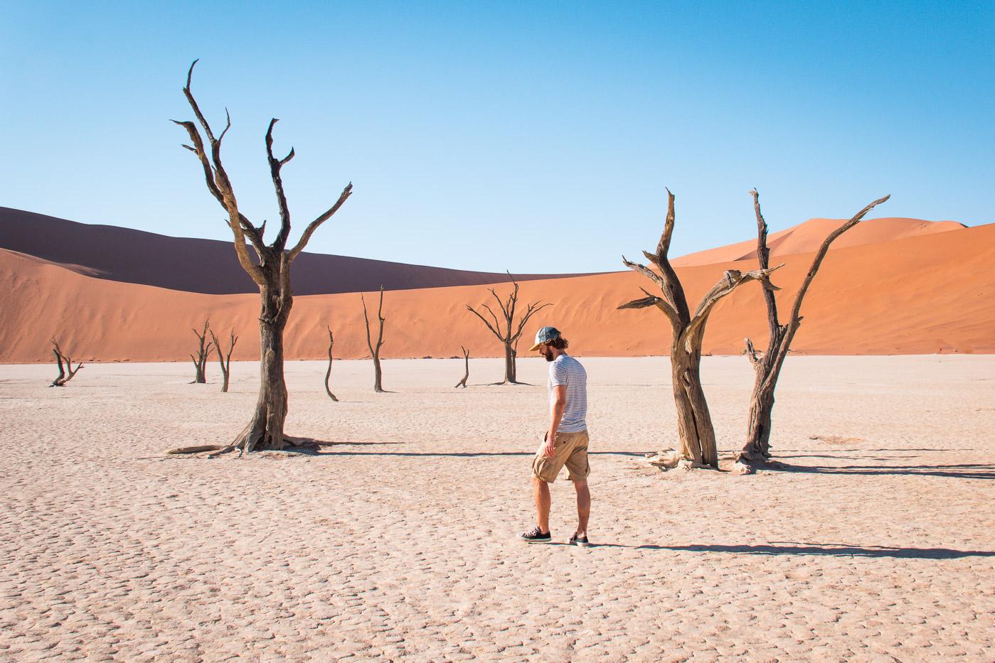 Sossusvlei namibie Deadvlei-3