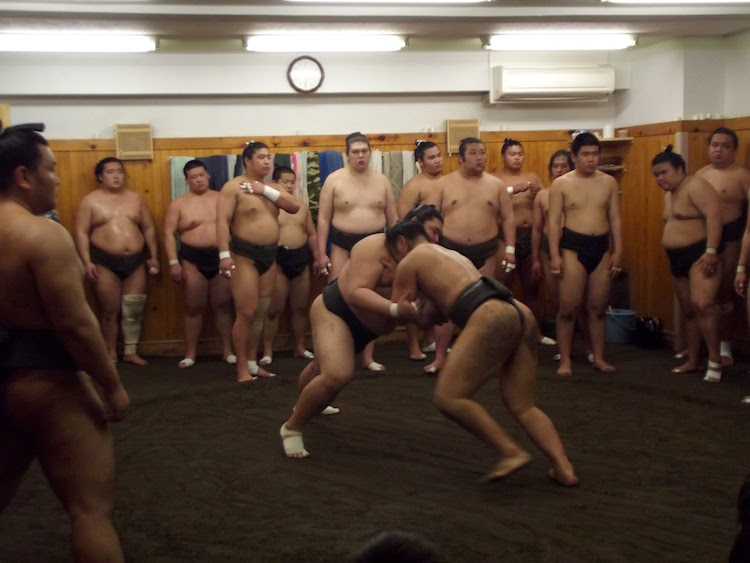 Sumo training japan