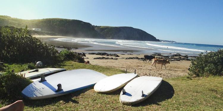 Surfen zuid afrika mdumbi