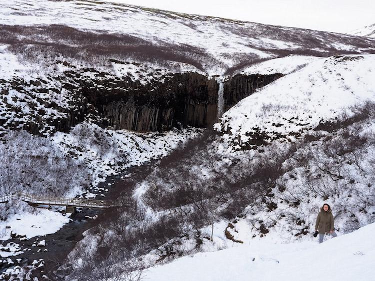 Svartifoss Waterval Skaftafell Falls