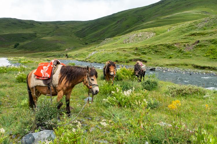 Tagong Tibet reizen