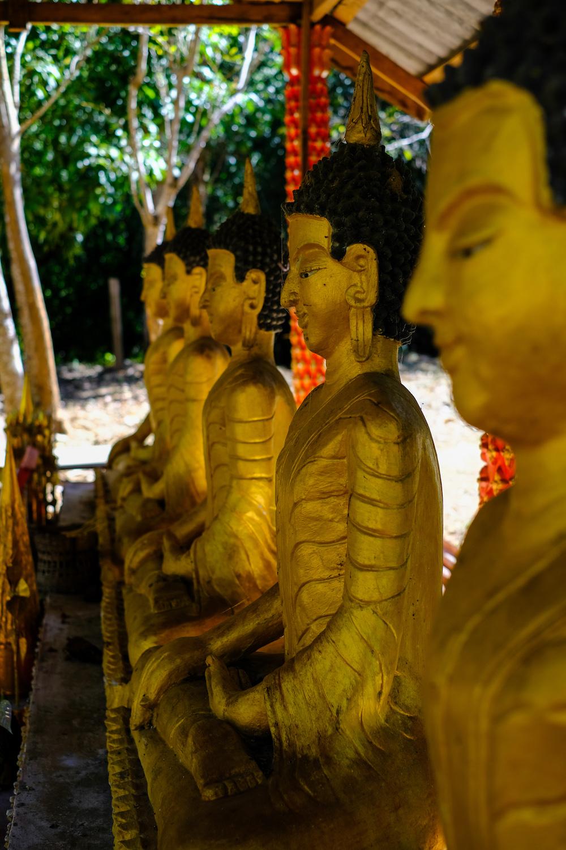 Tempels Bolaven Plateau Laos