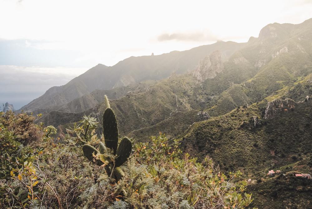 Tenerife wat te doen tips