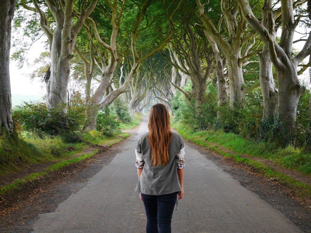 The Dark Hedges Ierland