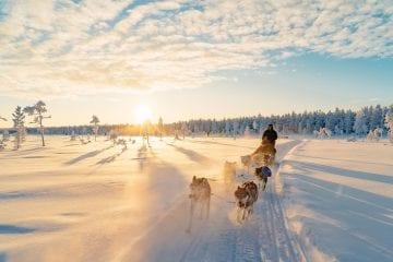 The Lapland Trip husky tocht