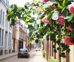 Tilburg wat te doen Tuinstraat