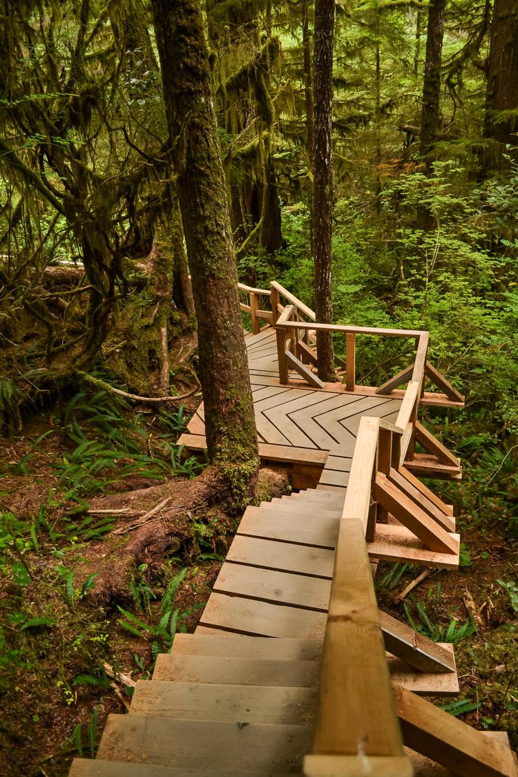 Tofino Ucluelet Vancouver Island-4