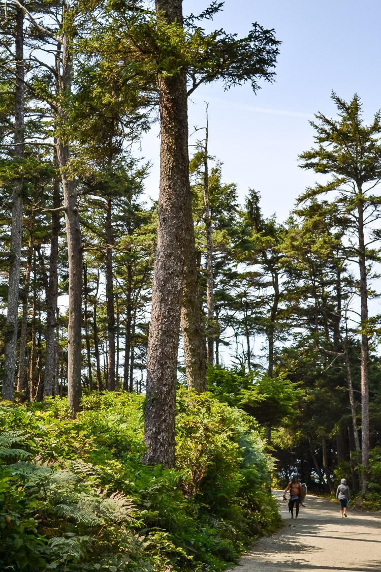 Tofino Ucluelet Vancouver Island-5