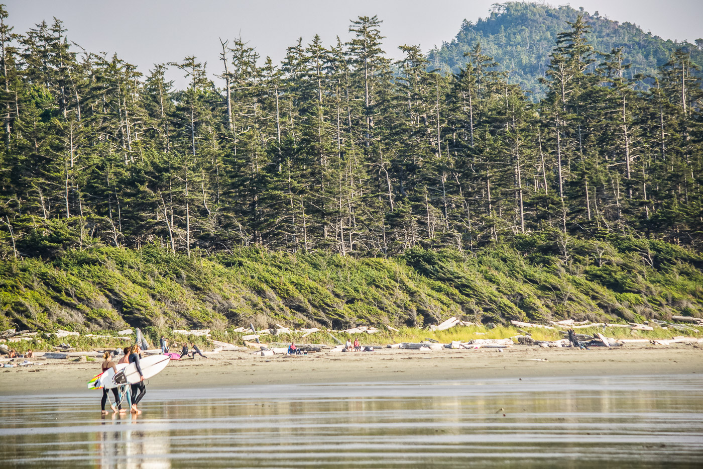 Tofino Vancouver Island Cox Bay