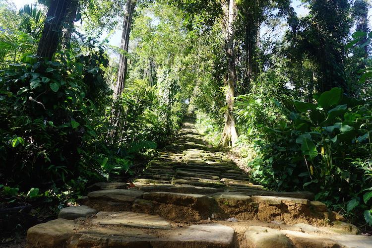 Trappen naar verloren stad in Colombia
