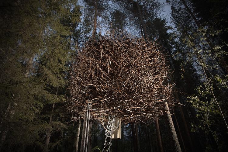 Treehotel zweden The Birds Nest