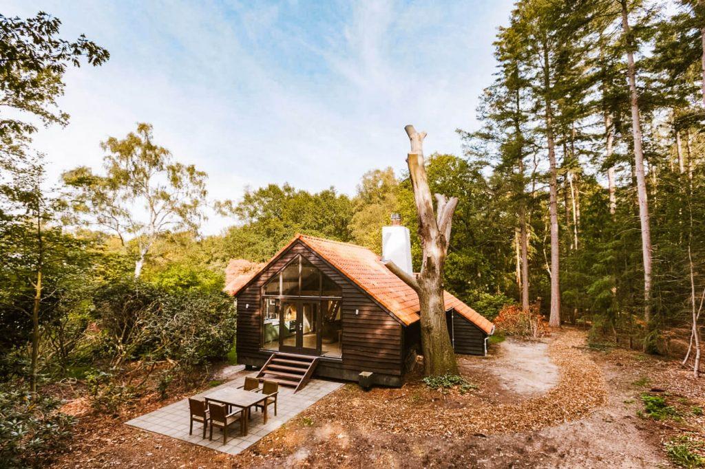 Treehouse studio slapen in bos Veluwe