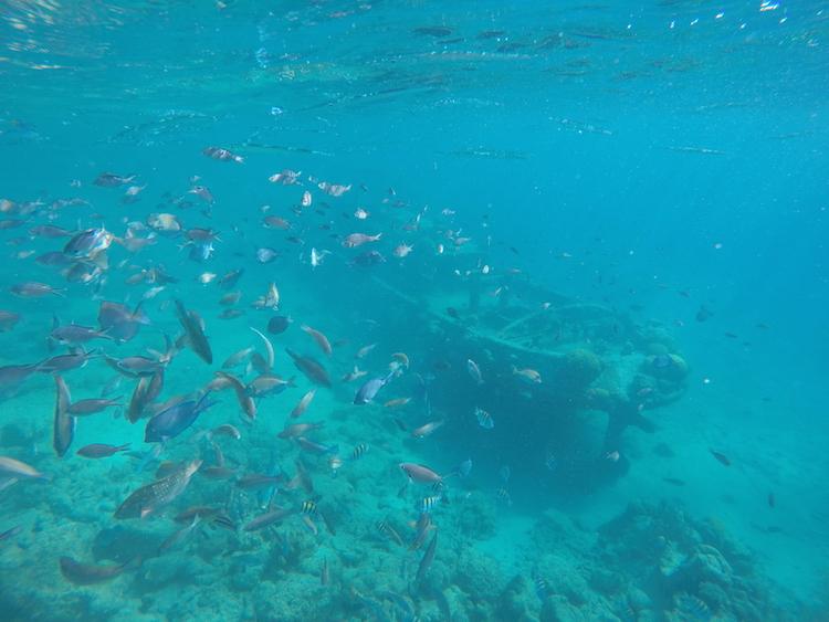 Tugboat snorkelen curacao