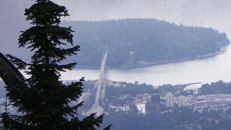 Uitzicht vanaf groose mountaint